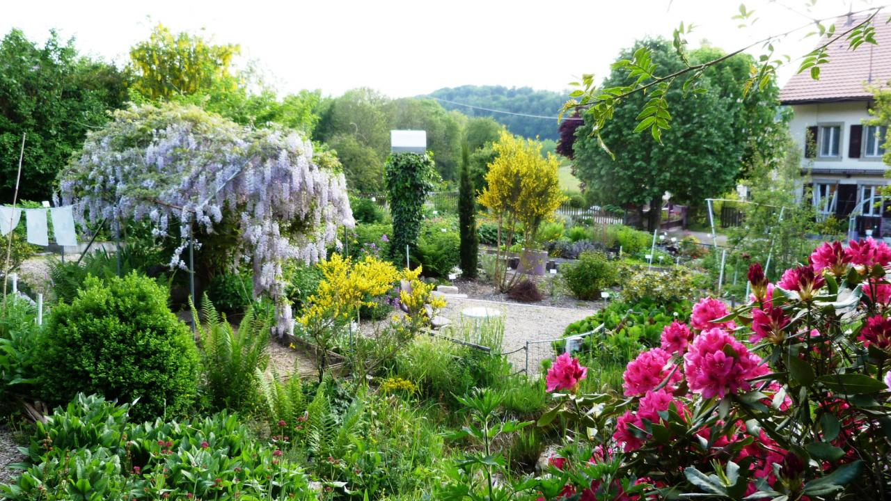 Jardin 2014