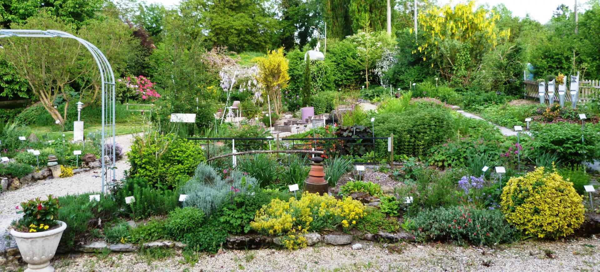Jardin 2014 3
