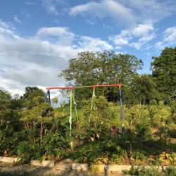 Jardinvuesgenerales 1