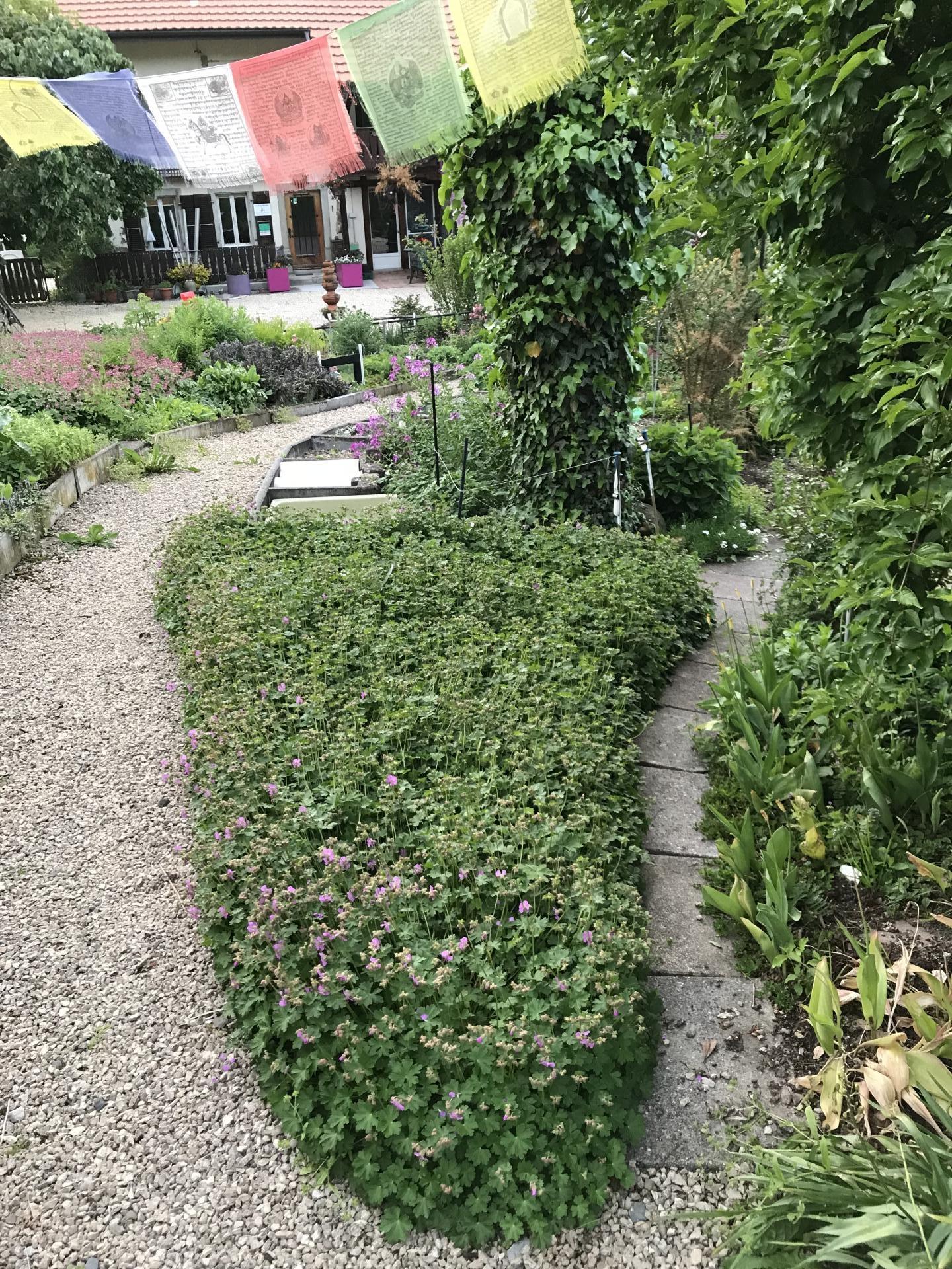 Jardinvuesgenerales 10