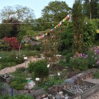 Jardinvuesgenerales 12