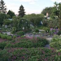 Jardinvuesgenerales 13