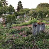 Jardinvuesgenerales 14