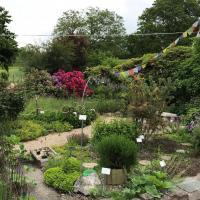 Jardinvuesgenerales 15