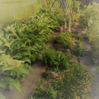 Jardinvuesgenerales 23