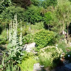 Jardinvuesgenerales1 13