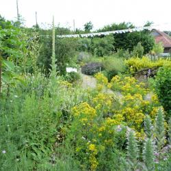 Jardinvuesgenerales1 25