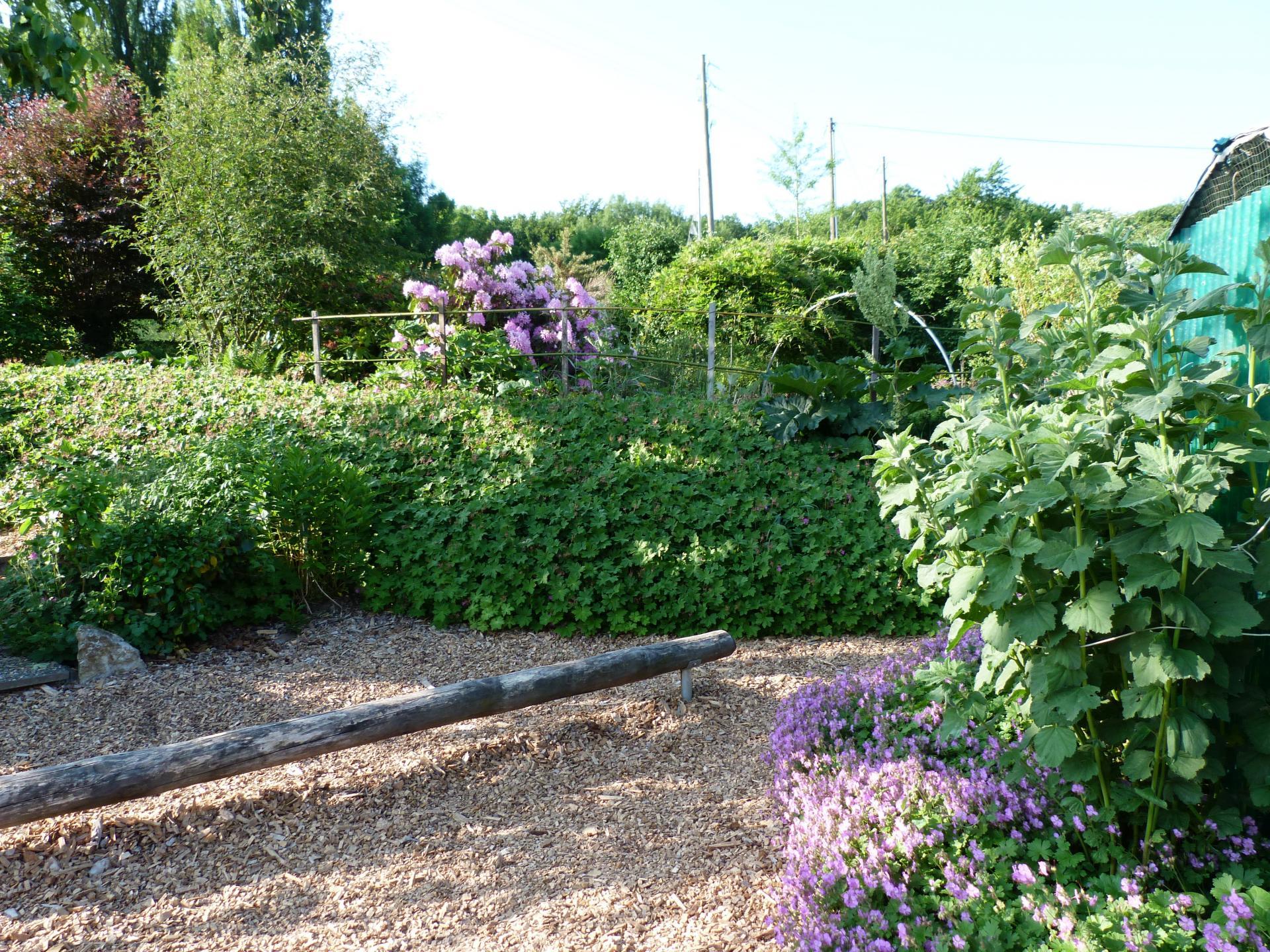 Jardinvuesgenerales1 28