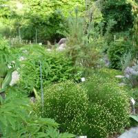 Jardinvuesgenerales1 29