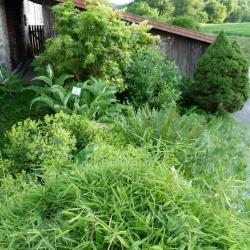 Jardinvuesgenerales1 30