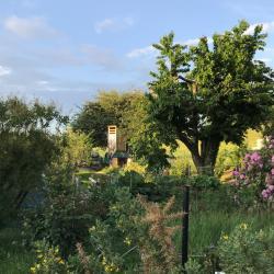 Jardinvuesgenerales1 4 1