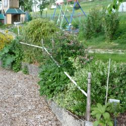 Jardinvuesgenerales1 41