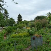 Jardinvuesgenerales1 70