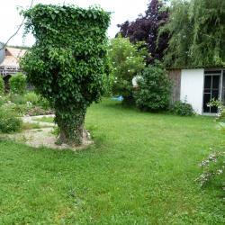 Jardinvuesgenerales1 74