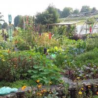 Jardinvuesgeneraleslepotager 3
