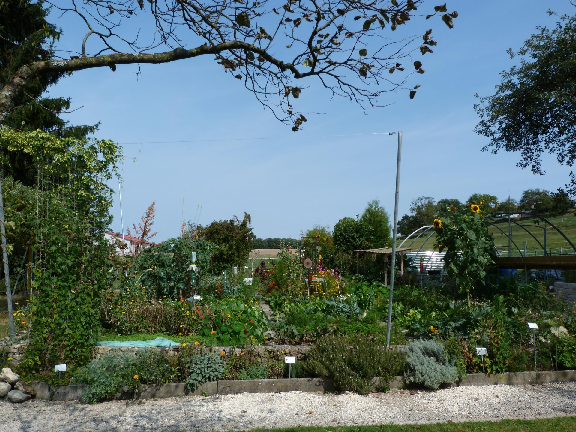 Jardinvuesgeneraleslepotager 35