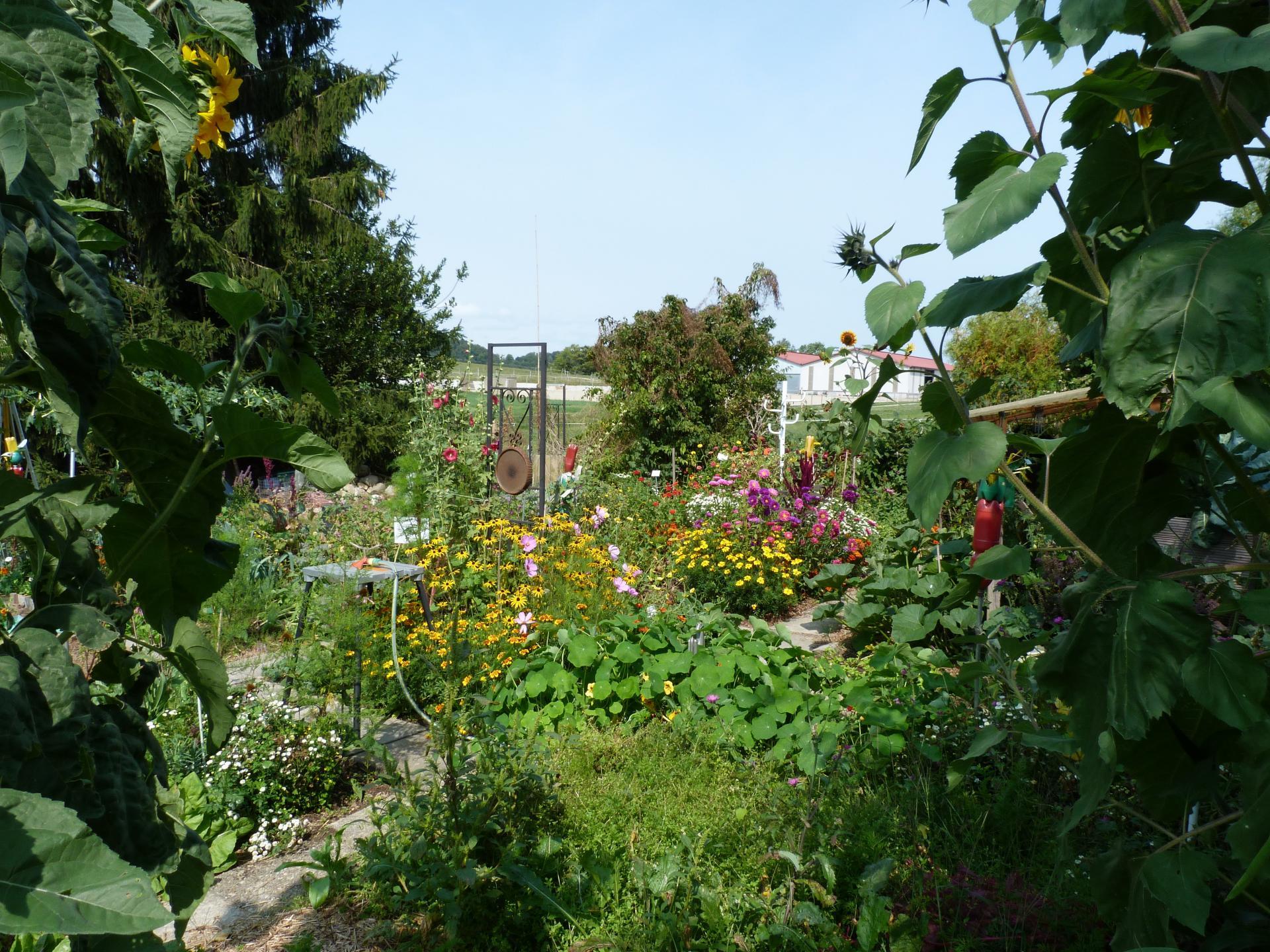 Jardinvuesgeneraleslepotager 61
