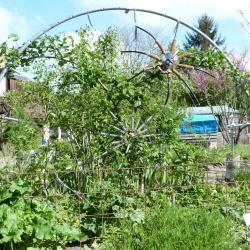 Jardinvuesgeneralesmuriertoilearaignee 18