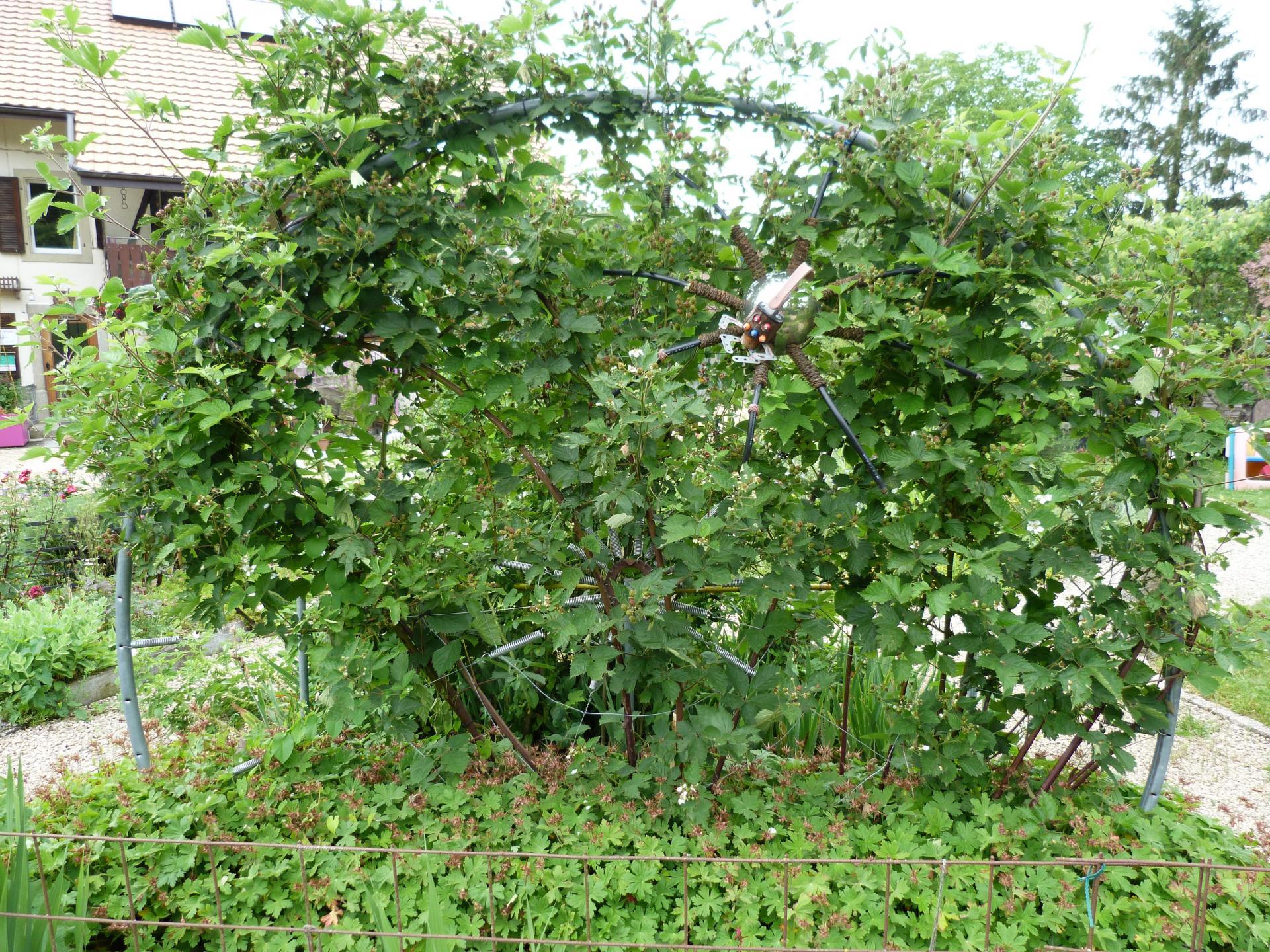 Jardinvuesgeneralesmuriertoilearaignee 64