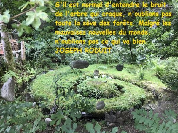Penseejour 1